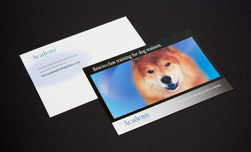 Academy for Dog Trainers Mailer