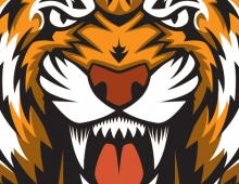 Morrill Middle School Tigers Thumbnail
